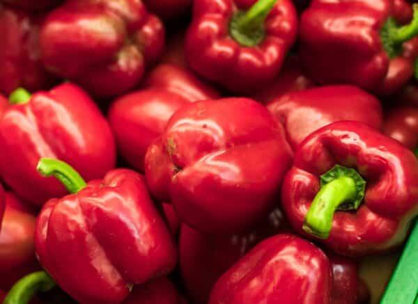 agriculture en food industrie - rode paprika