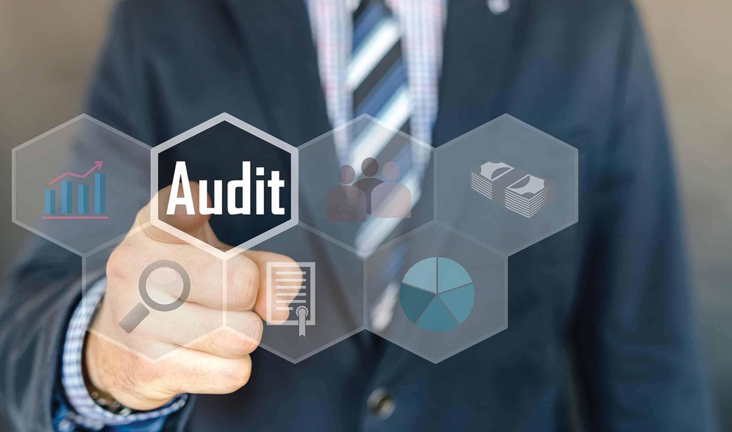 auditmanagement