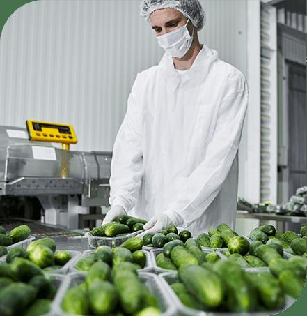 kwaliteitsmanagement in de voedselindustrie